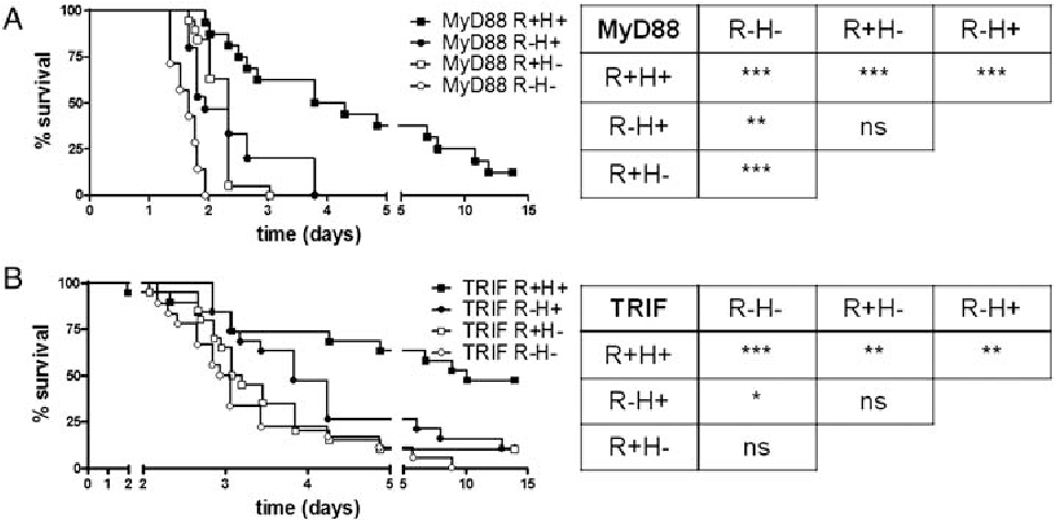 Differential roles of myd88 and trif in hematopoietic and resident figure 2 ccuart Images