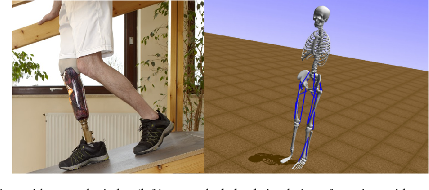 Figure 1 for Artificial Intelligence for Prosthetics - challenge solutions