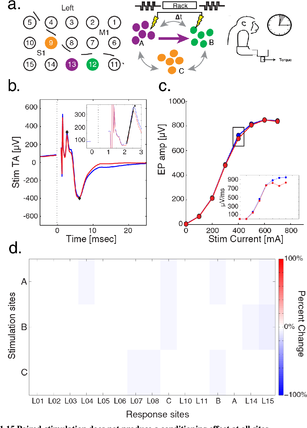 Figure 1.15 Paired-stimulation does not produce a conditioning effect at all sites. a) Schematic of recording grid with A (purple), B (green), and C (orange) sites denoted for a conditioning session at a 20 ms delay in monkey U while in the recording booth for 1 hour. b) StTA of AB EP before (blue) and after (red) conditioning. Inset, expansion of StTA showing the slope (black line) of the first EP phase. Black diamonds denote peak and trough used to calculate amplitude in c. c) AB stimulus-response curve before (blue) and after (red) conditioning. Black box denotes current depicted in b. Inset, stimulus-response curve before and after conditioning for slope of first EP phase. d) Percent change in EP amplitude from A, B, and C to all other recording sites after conditioning.