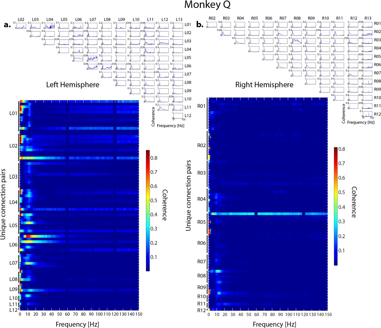 Figure 2.17 Full spectrum coherence for sites in monkey Q. Top: Left hemisphere coherence versus frequency for each unique ipsilateral connection pair. Dotted horizontal line shows significant coherence cutoff. Bottom: Each row shows left hemisphere coherence for each unique ipsilateral connection pair across frequencies. b) Same as a for right hemisphere connections.