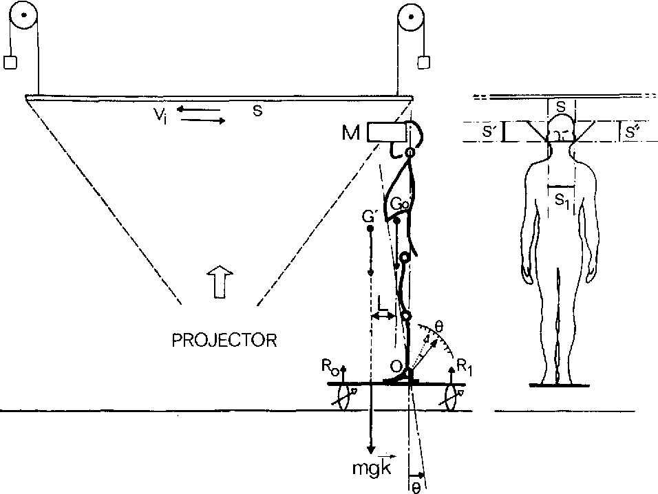 Postural Readjustments Induced By Linear Motion Of Visual Scenes
