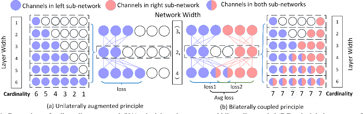 Figure 1 for BCNet: Searching for Network Width with Bilaterally Coupled Network