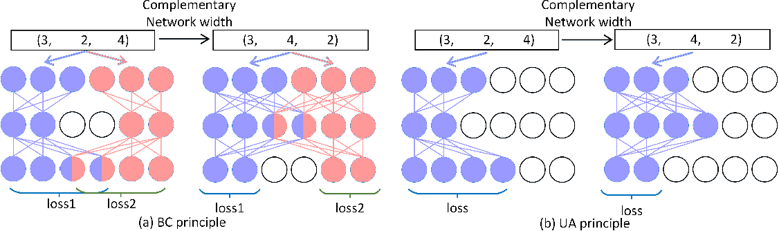 Figure 3 for BCNet: Searching for Network Width with Bilaterally Coupled Network