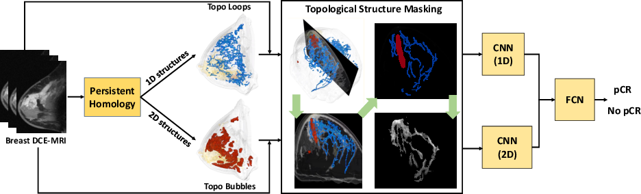 Figure 3 for TopoTxR: A Topological Biomarker for Predicting Treatment Response in Breast Cancer