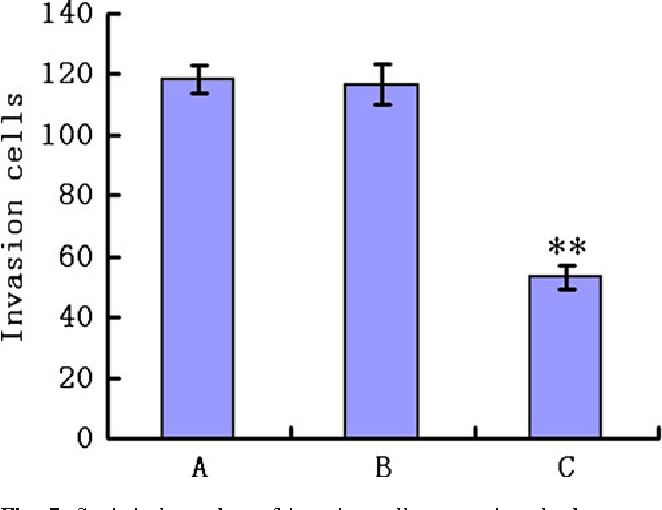 Fig. 7 Statistical number of invasive cell penetrating the basement membrane in A549 cell of each group. Cell invasion ability of A549 was reduced after transfection with miR-1258 was performed, while there was no substantial difference between the untreated group and scrambled group in comparison