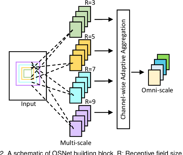 Figure 3 for Learning Generalisable Omni-Scale Representations for Person Re-Identification