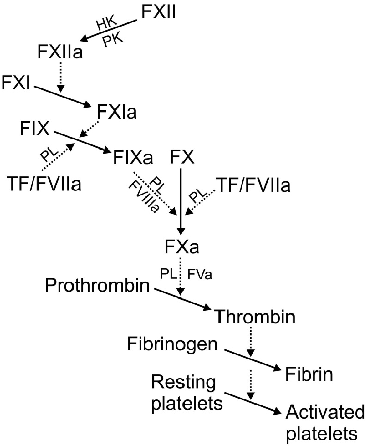 Figure 1 from THE TISSUE FACTOR-FACTOR VII(a) COMPLEX IN BLOOD ...