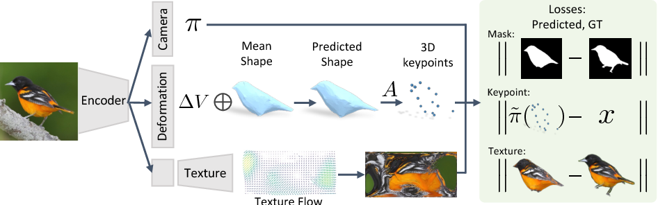 Figure 2 for Learning Category-Specific Mesh Reconstruction from Image Collections