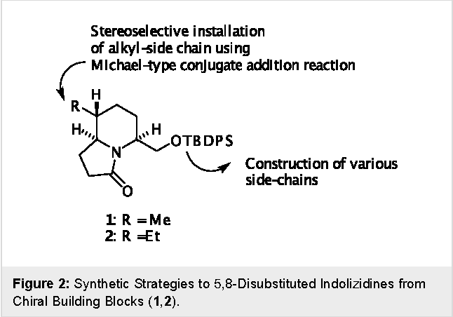 Figure 2: Synthetic Strategies to 5,8-Disubstituted Indolizidines from Chiral Building Blocks (1,2).