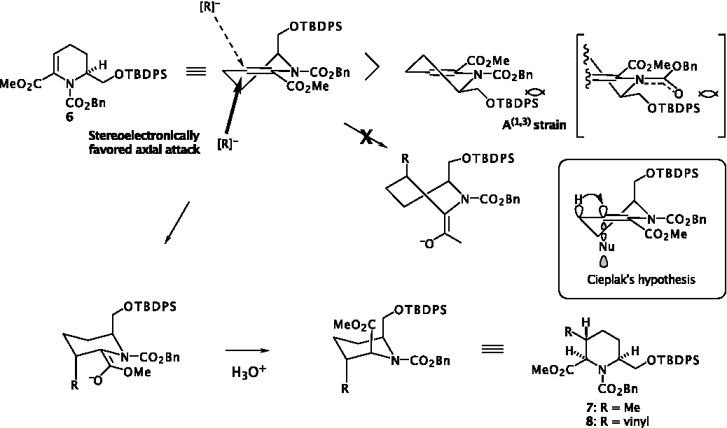 Figure 3: Stereochemical Course of Key Michael-type Conjugate Addition Reaction of 6.