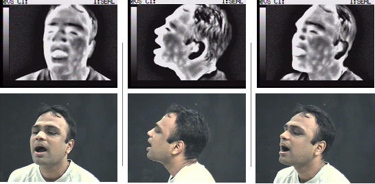 Figure 3 for The Use of AI for Thermal Emotion Recognition: A Review of Problems and Limitations in Standard Design and Data