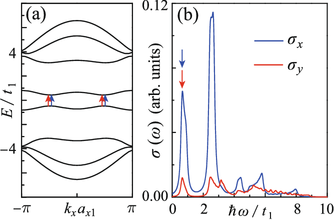 Figure 7. (a) When t3/t1 = 0 and eEzz = 0.6t1, the electronic band structure shows the e-h symmetry and thus the electric-field-induced band gap is direct. (b) The electric-field induced absorptions of the x- and y-polarized photons with energy resonating to the gap.