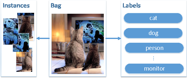 Figure 1 for MIML-FCN+: Multi-instance Multi-label Learning via Fully Convolutional Networks with Privileged Information