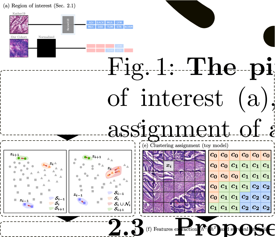 Figure 1 for Divide-and-Rule: Self-Supervised Learning for Survival Analysis in Colorectal Cancer