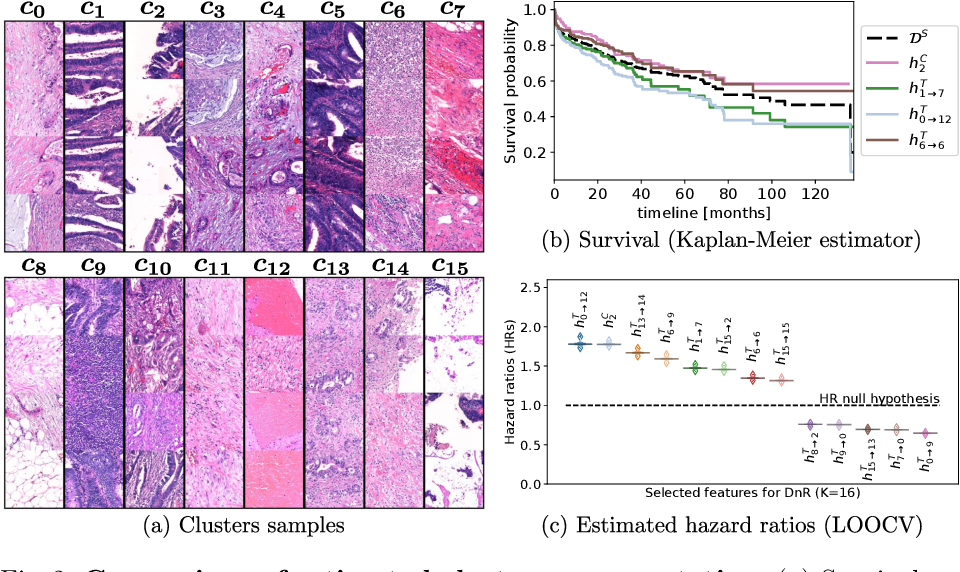 Figure 3 for Divide-and-Rule: Self-Supervised Learning for Survival Analysis in Colorectal Cancer
