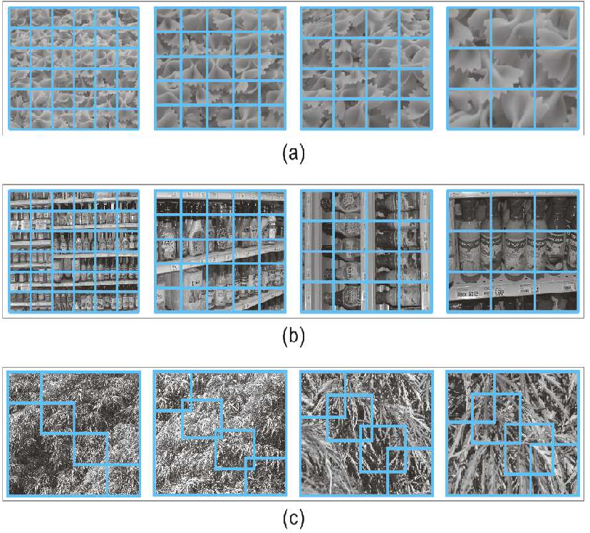 Figure 1 for Multi-Level Feature Descriptor for Robust Texture Classification via Locality-Constrained Collaborative Strategy
