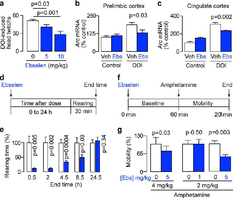 A safe lithium mimetic for bipolar disorder - Semantic Scholar