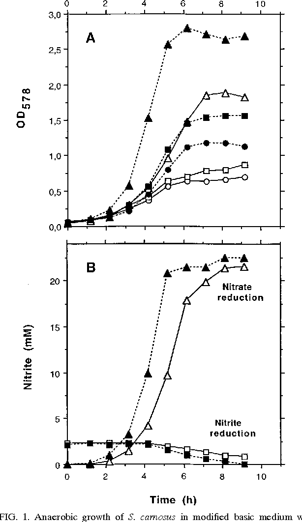 Figure 1 From Physiology And Interaction Of Nitrate And Nitrite