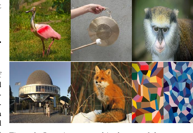 Figure 3 for Visualizing Deep Convolutional Neural Networks Using Natural Pre-Images