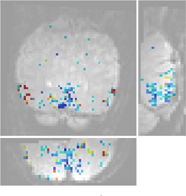 Figure 1 for Second order scattering descriptors predict fMRI activity due to visual textures
