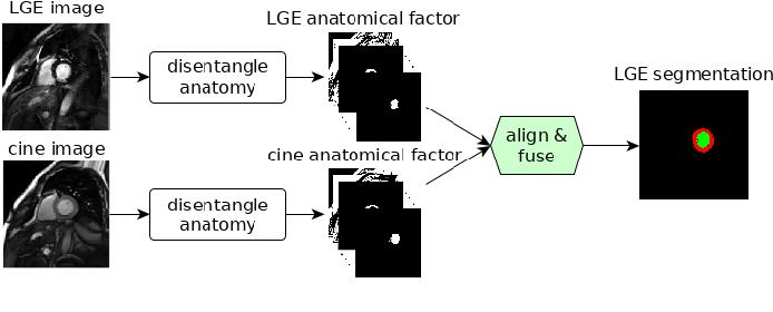 Figure 1 for Disentangle, align and fuse for multimodal and zero-shot image segmentation