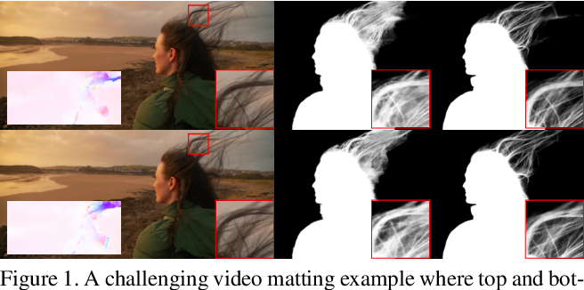 Figure 1 for Deep Video Matting via Spatio-Temporal Alignment and Aggregation