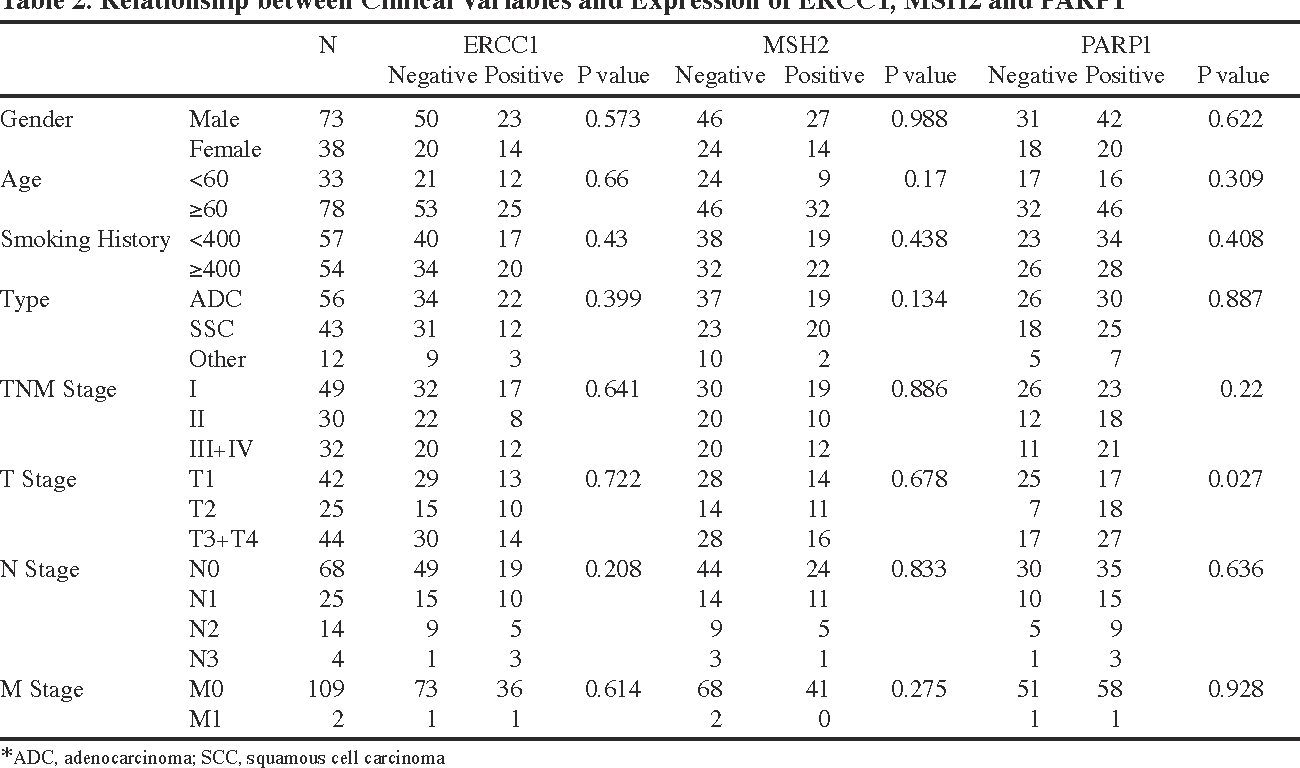 Table 2. Relationship between Clinical Variables and Expression of ERCC1, MSH2 and PARP1