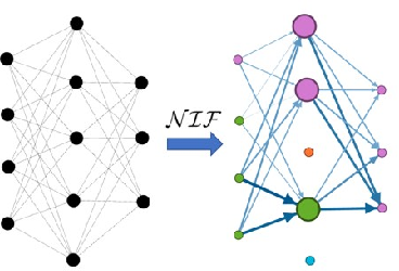 Figure 1 for NIF: A Framework for Quantifying Neural Information Flow in Deep Networks
