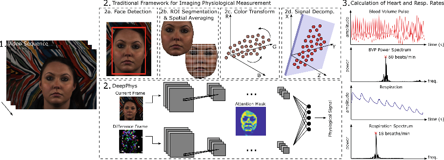 Figure 1 for DeepPhys: Video-Based Physiological Measurement Using Convolutional Attention Networks