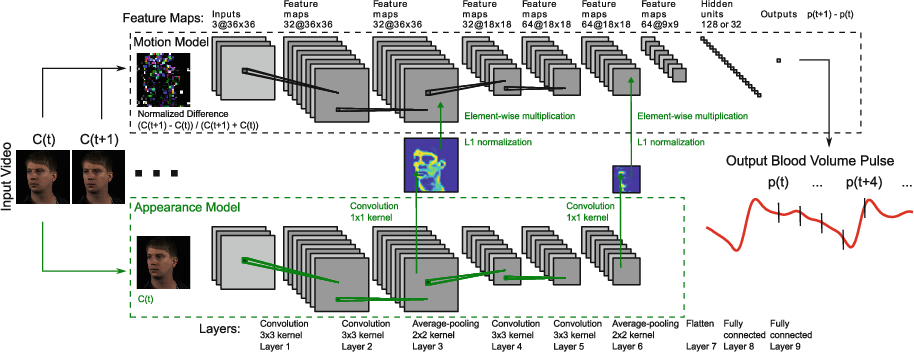 Figure 3 for DeepPhys: Video-Based Physiological Measurement Using Convolutional Attention Networks