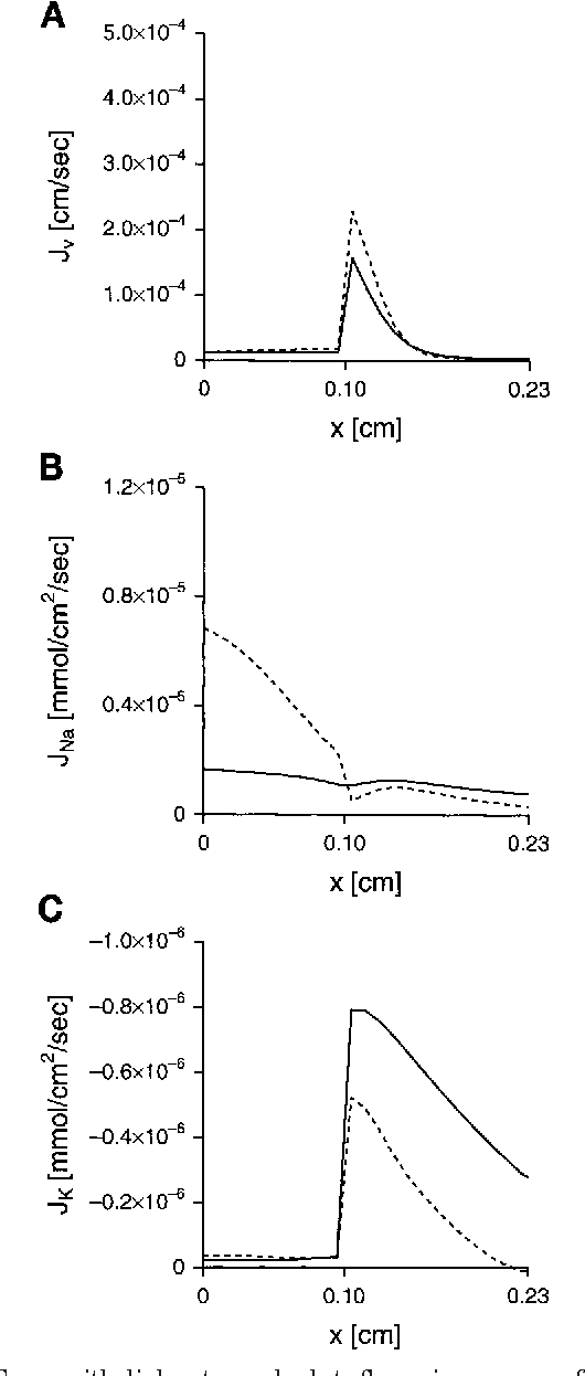 Figure 6 From A Numerical Model Of The Renal Distal Tubule