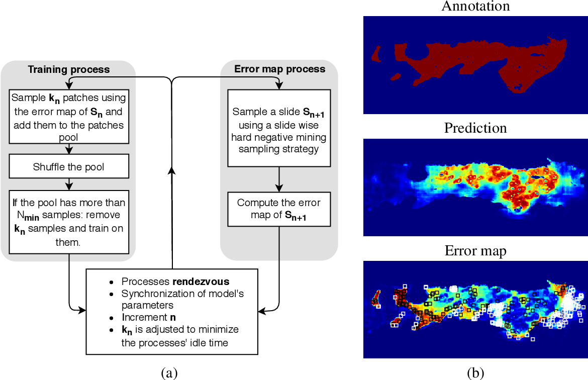 Figure 3 for Segmenting Potentially Cancerous Areas in Prostate Biopsies using Semi-Automatically Annotated Data