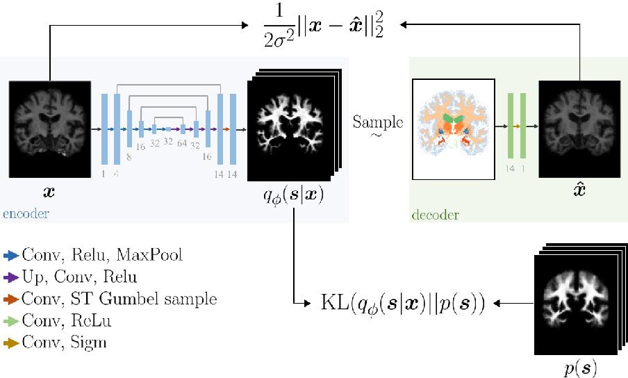 Figure 1 for An Auto-Encoder Strategy for Adaptive Image Segmentation