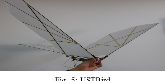 Figure 4 for Vision-Based Target Localization for a Flapping-Wing Aerial Vehicle