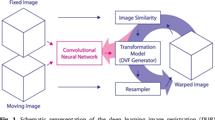 Figure 1 for A Deep Learning Framework for Unsupervised Affine and Deformable Image Registration
