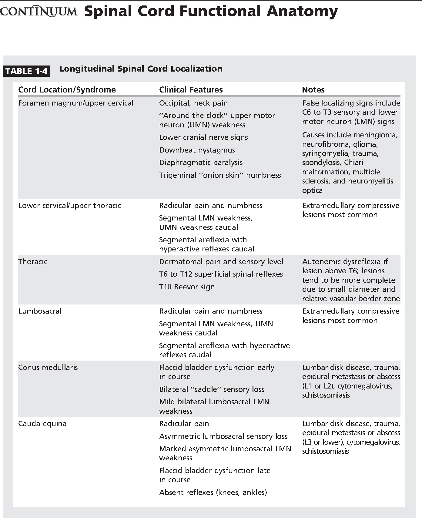 Table 1 4 From Spinal Cord Functional Anatomy Semantic Scholar