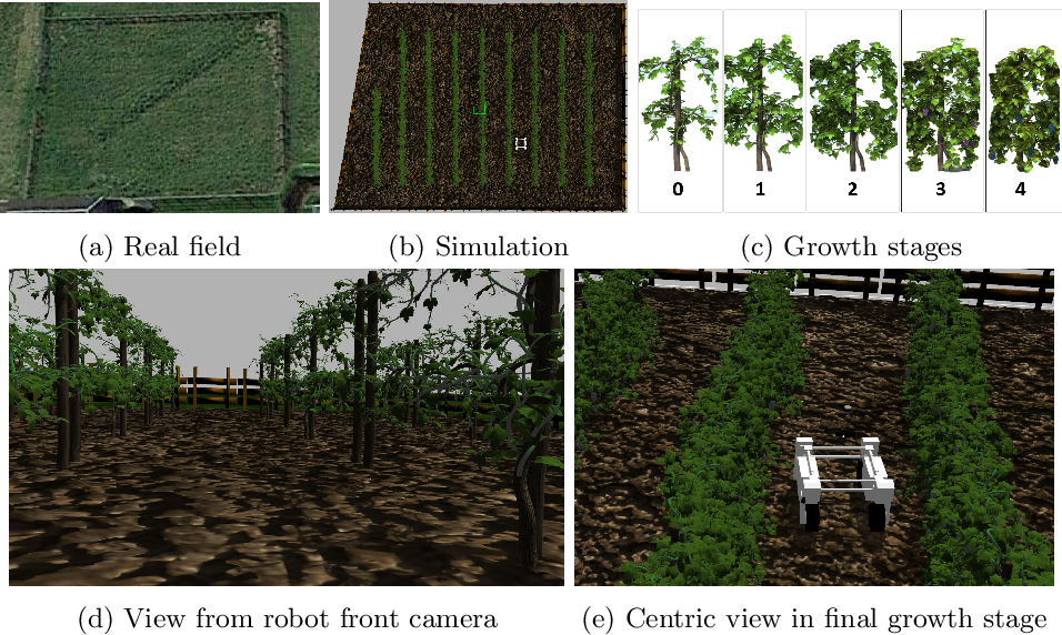 Figure 2 for Benchmark of visual and 3D lidar SLAM systems in simulation environment for vineyards