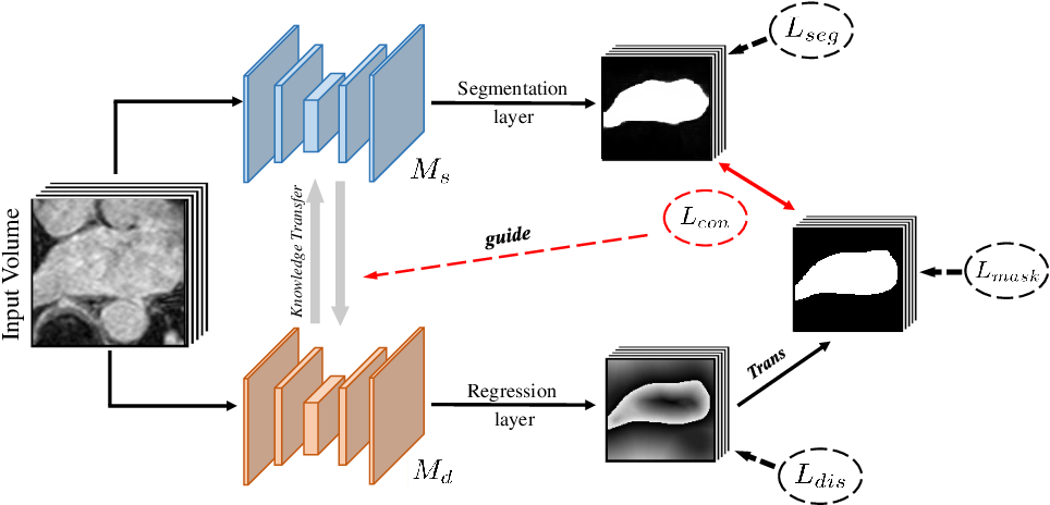 Figure 1 for Dual-Task Mutual Learning for Semi-Supervised Medical Image Segmentation