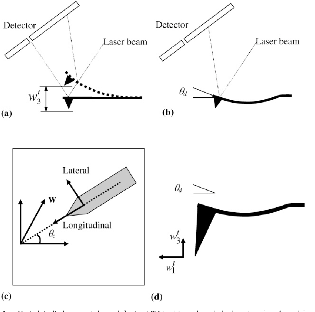 Figure 2 From Vector Piezoresponse Force Microscopy Semantic Scholar Beam Deflection Diagram A Vertical Tip Displacement In Afm Is Achieved Through