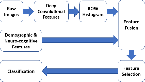 Figure 1 for A Deep Unsupervised Learning Approach Toward MTBI Identification Using Diffusion MRI
