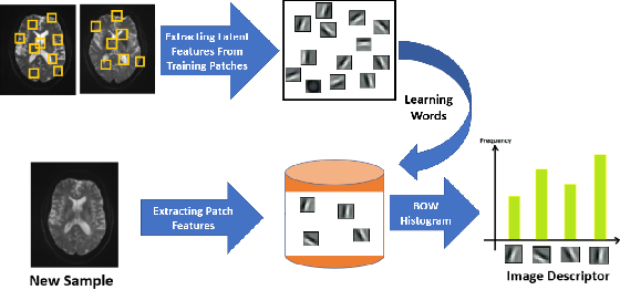 Figure 3 for A Deep Unsupervised Learning Approach Toward MTBI Identification Using Diffusion MRI