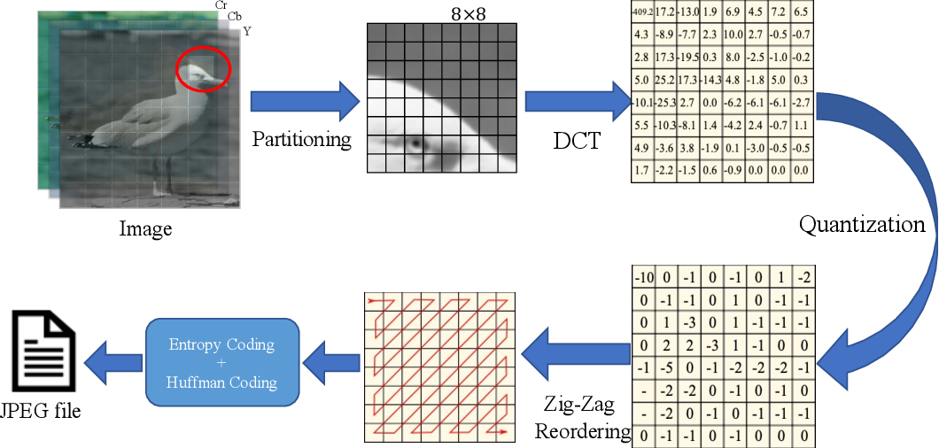 Figure 1 for Optimizing JPEG Quantization for Classification Networks