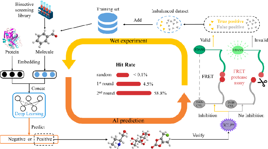 Figure 1 for A Novel Framework Integrating AI Model and Enzymological Experiments Promotes Identification of SARS-CoV-2 3CL Protease Inhibitors and Activity-based Probe