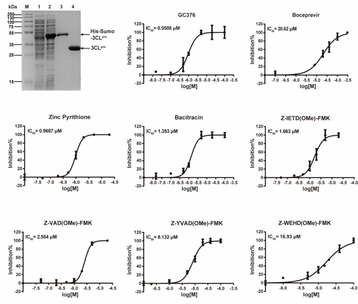 Figure 3 for A Novel Framework Integrating AI Model and Enzymological Experiments Promotes Identification of SARS-CoV-2 3CL Protease Inhibitors and Activity-based Probe