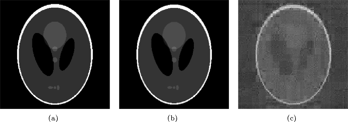 Figure 2 for Stable image reconstruction using total variation minimization