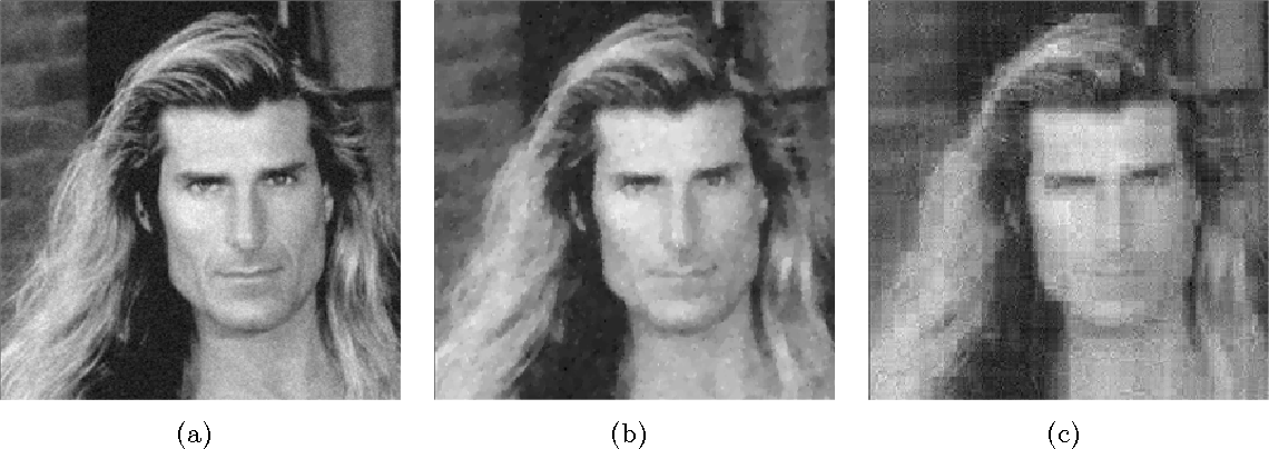 Figure 4 for Stable image reconstruction using total variation minimization