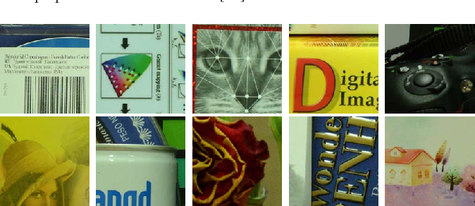 Fig. 4. Some sample images from the Dataset 1 [42].