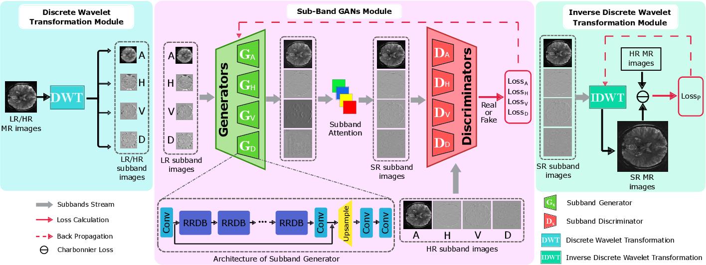 Figure 4 for Fine Perceptive GANs for Brain MR Image Super-Resolution in Wavelet Domain