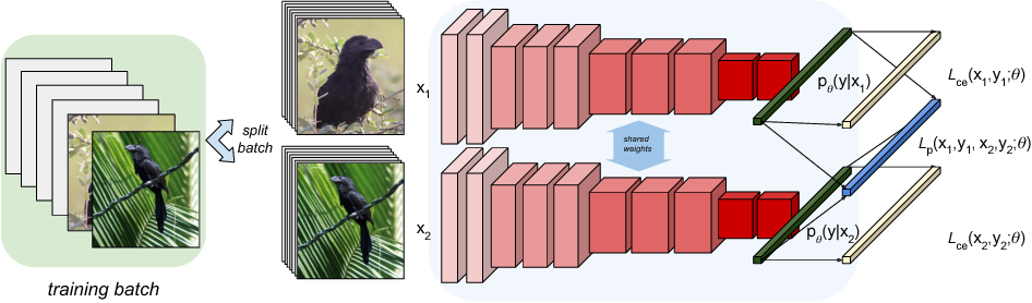 Figure 2 for Pairwise Confusion for Fine-Grained Visual Classification