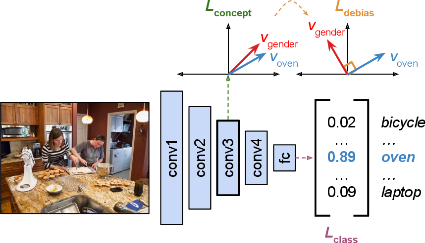 Figure 1 for Debiasing Convolutional Neural Networks via Meta Orthogonalization
